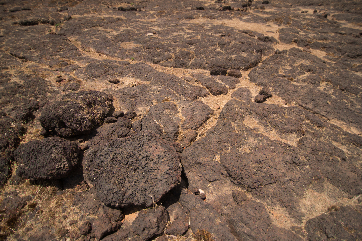 Lateritic soils are rich in aluminium and iron. Rocks on the Chalkewadi plateau, in the Satara district, show typical signs of weathering with the reddish tinges formed by rusting iron.