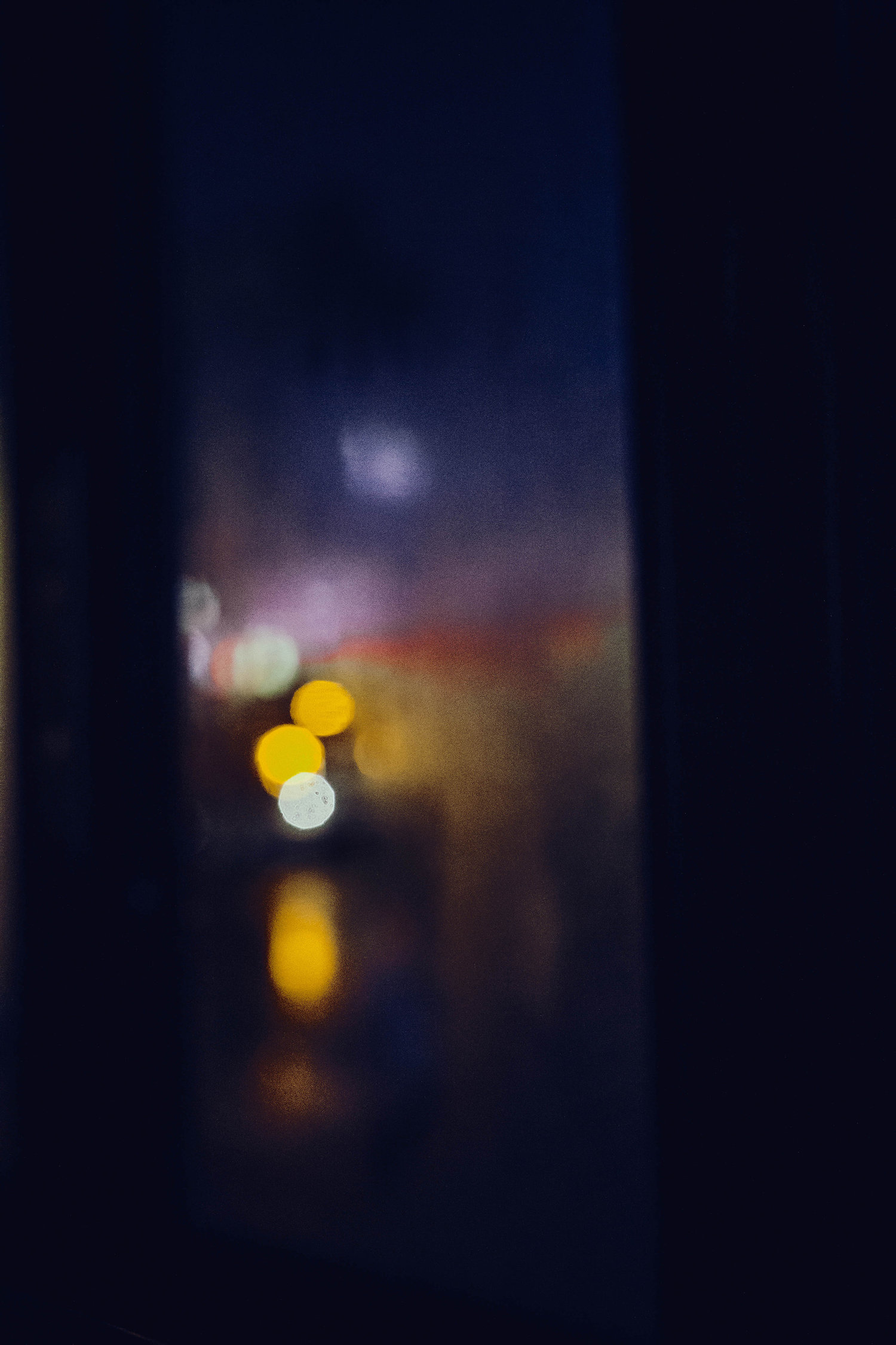 _MG_6310-2.jpg
