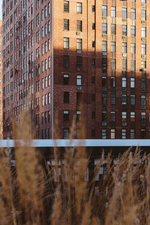 NY_1.jpg