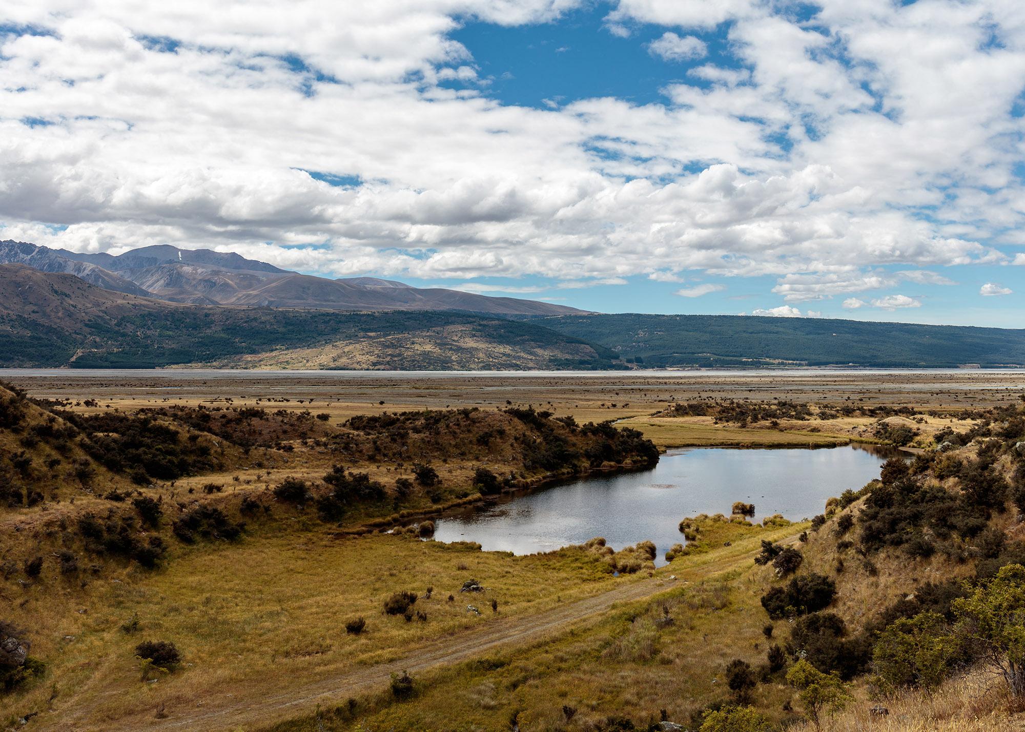 NZ_03.jpg