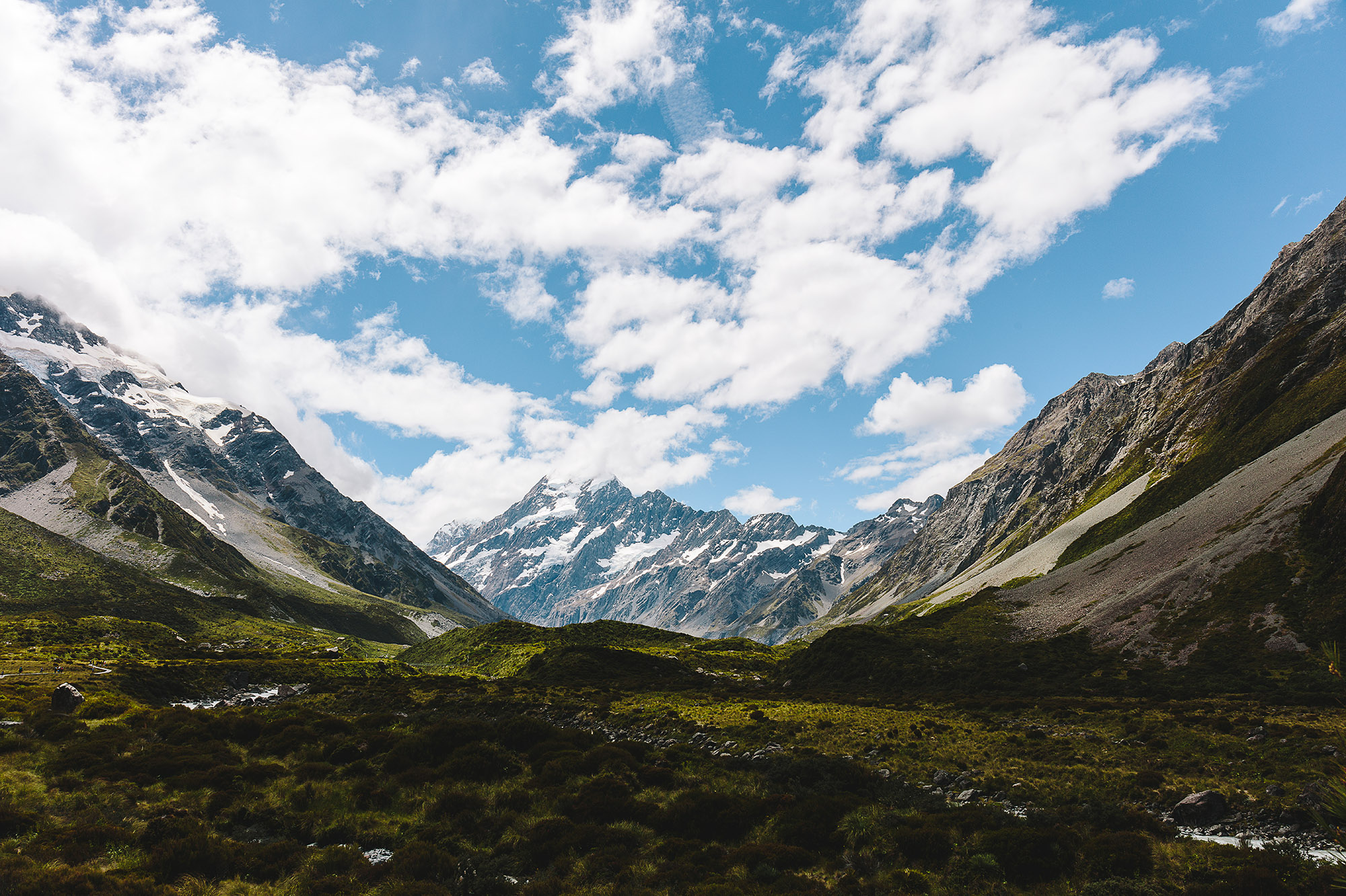 NZ_03+(2).jpg