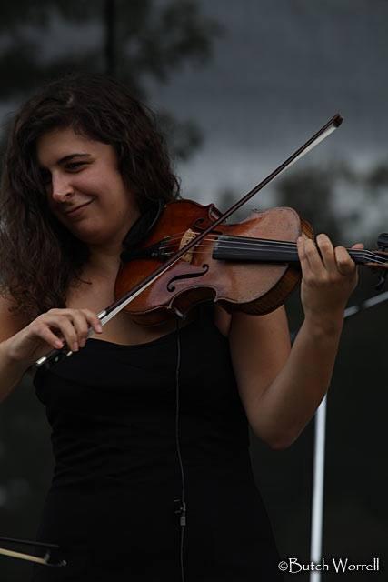 fiddle1.jpg