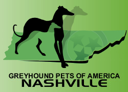 Greyhound Pets of America.jpg