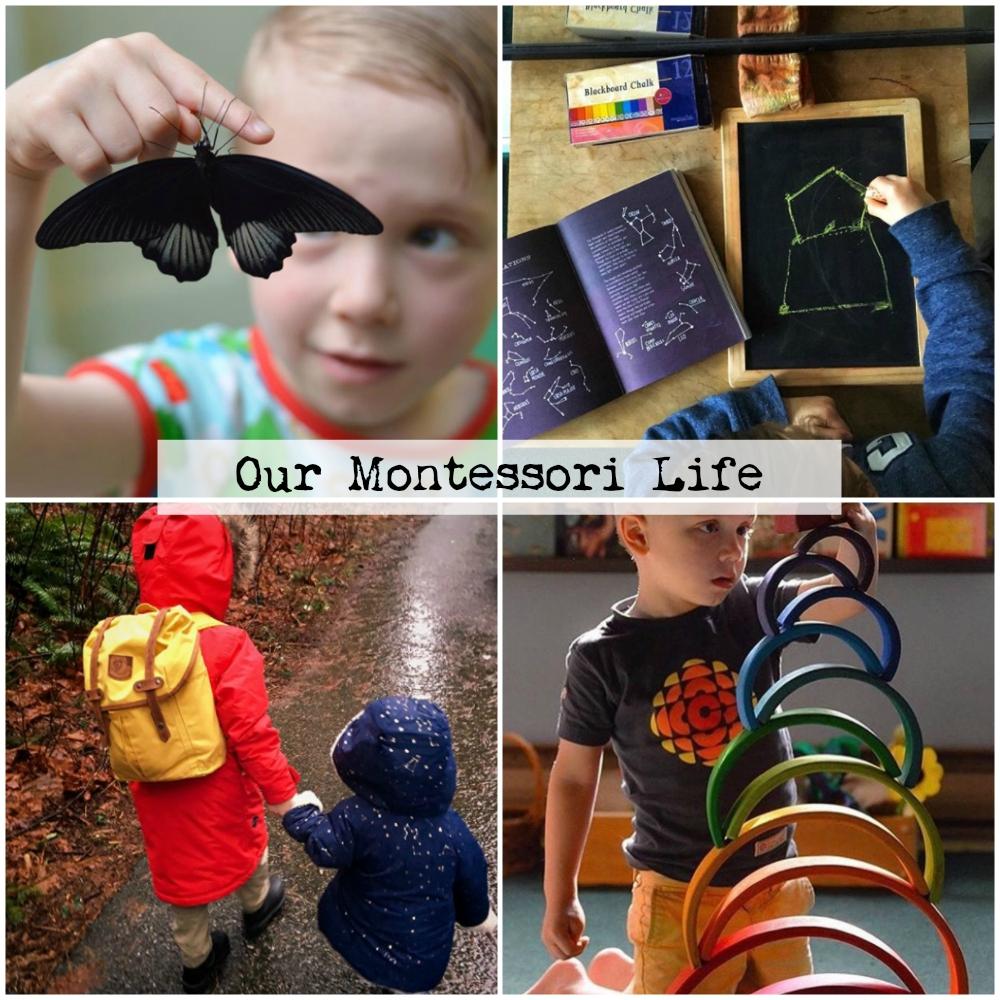 5 our montessori life.jpg