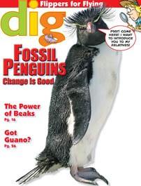 DIG1311_Fossil-Penguins_rgb.jpg