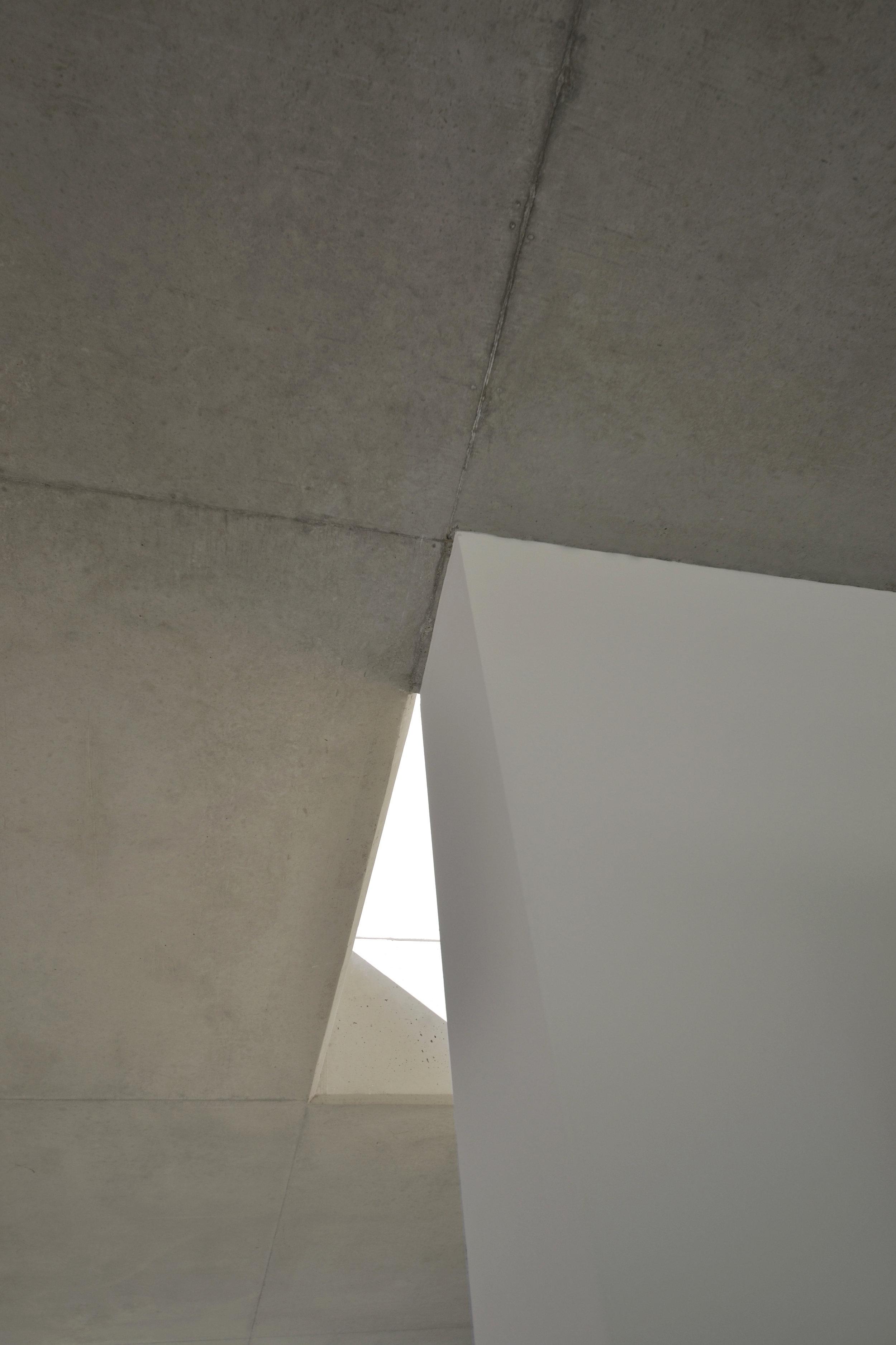 A1019-Pure_Gruppe-12.jpg