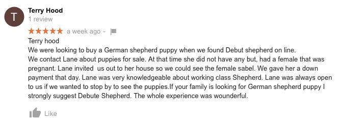 Texas German Shepherds