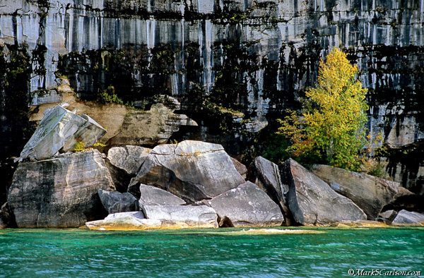 Fallen rock and birch tree along Pictured Rocks Nat'l Lakeshore; ©markscarlson.com