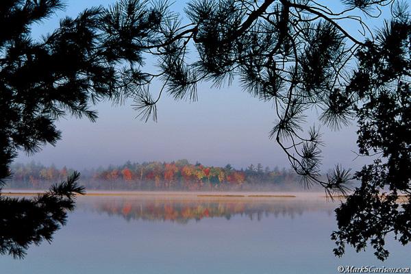 Lake Stella through evergreens, autumn; ©markscarlson.com