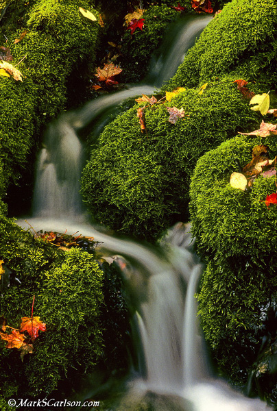 Waterfalls-through-moss-autumn