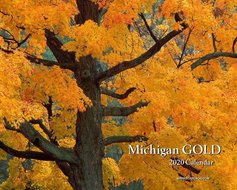 Michigan Gold Calendar 2020 cover