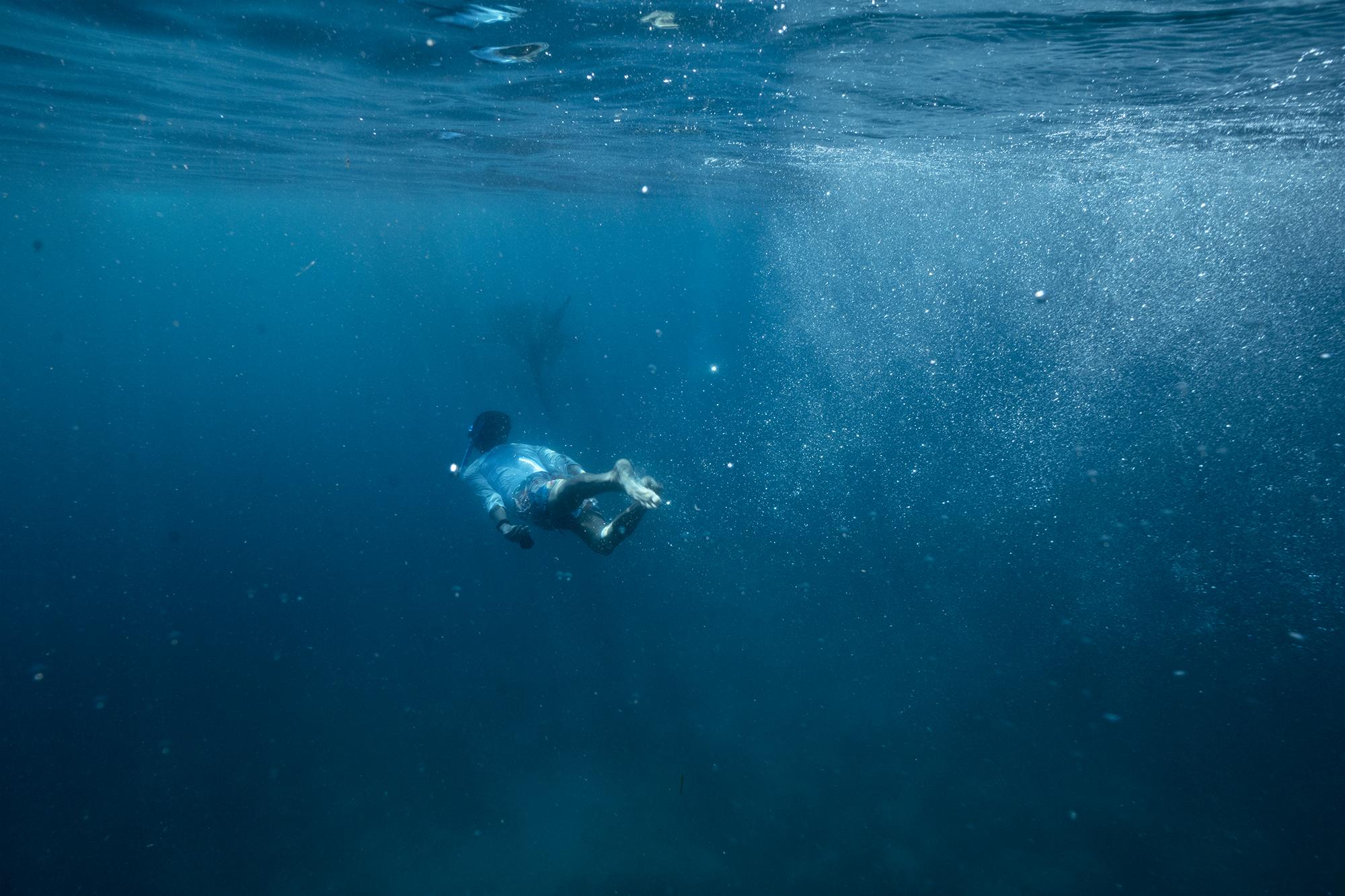 WhaleShark-Cebu-Oslob-hobo-life-hoang-m-nguyen