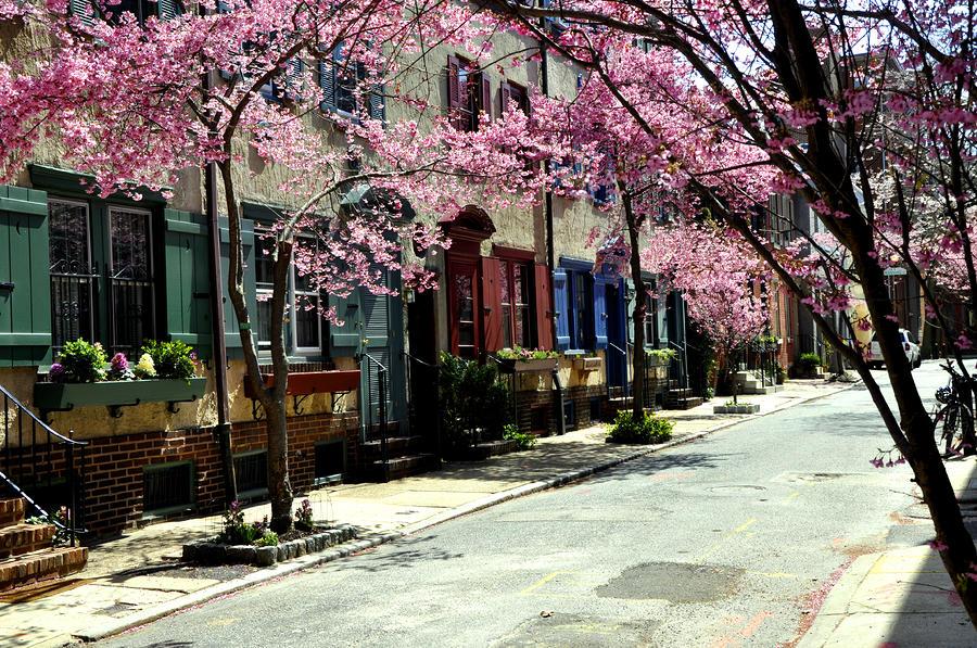 rittenhouse-square-neighborhood-andrew-dinh.jpg