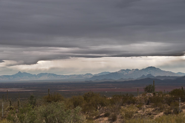 Arizona-Sonoran Desert Museum
