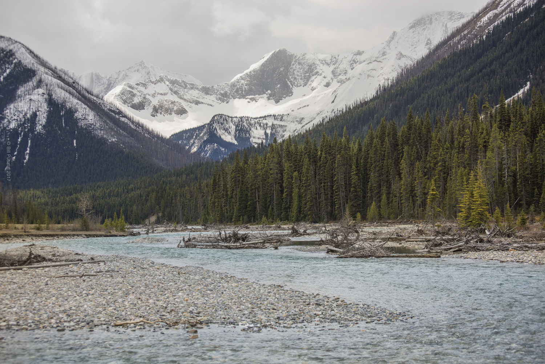 Kootenay River, BC, Canada.