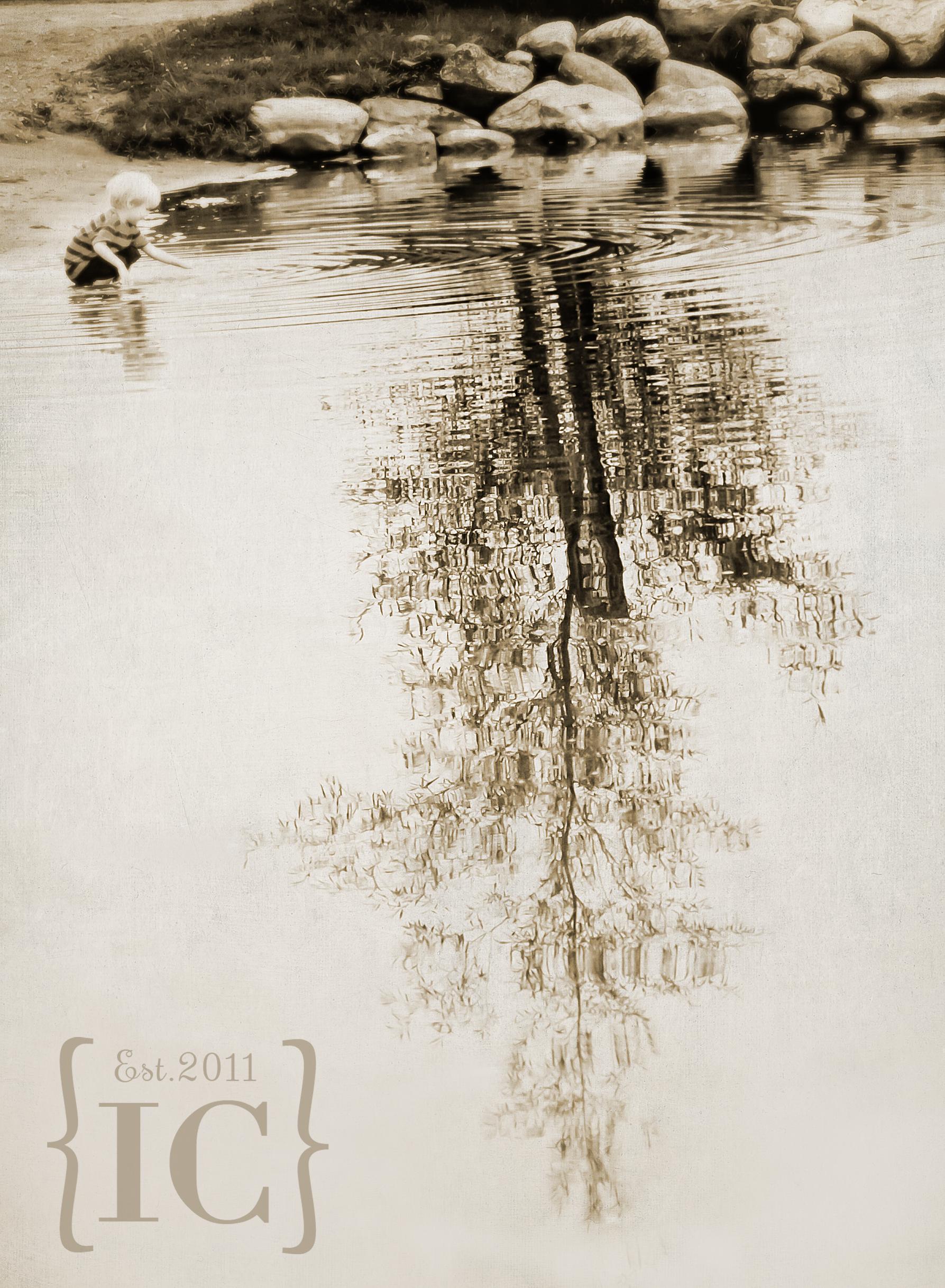 _MG_7409-Ronan-Tree-BW-watermarked