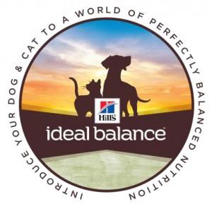 Ideal-Balance-logo-300x292.jpg