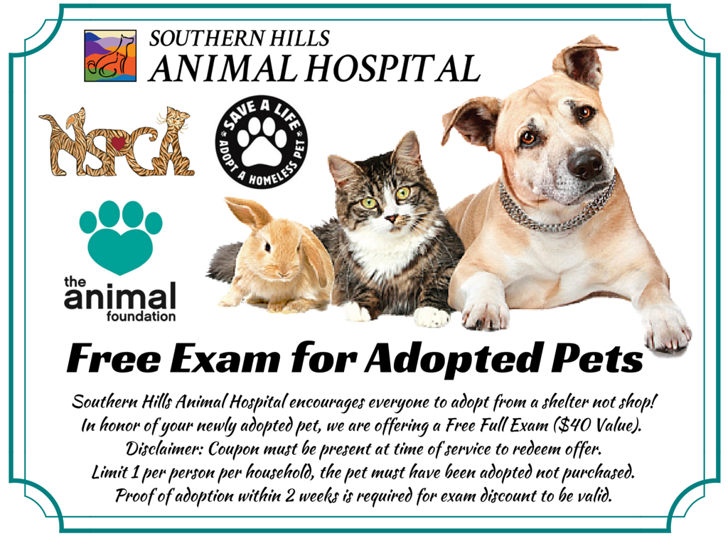 Southern Hills Adoption Exam