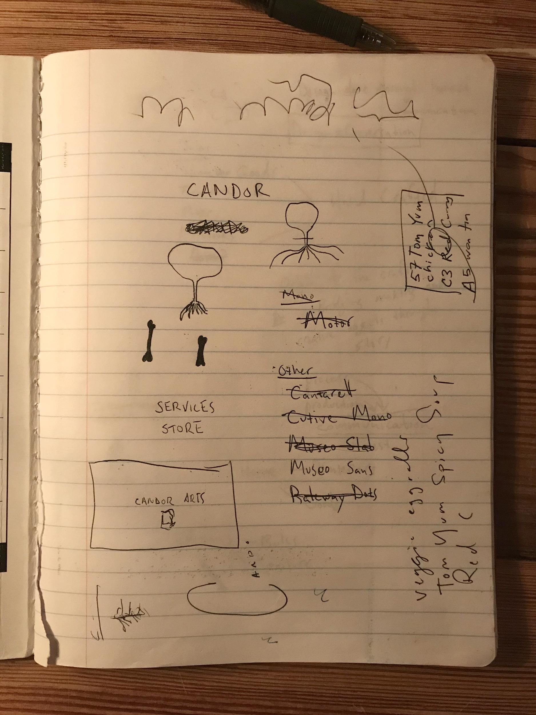 first notes1.jpg