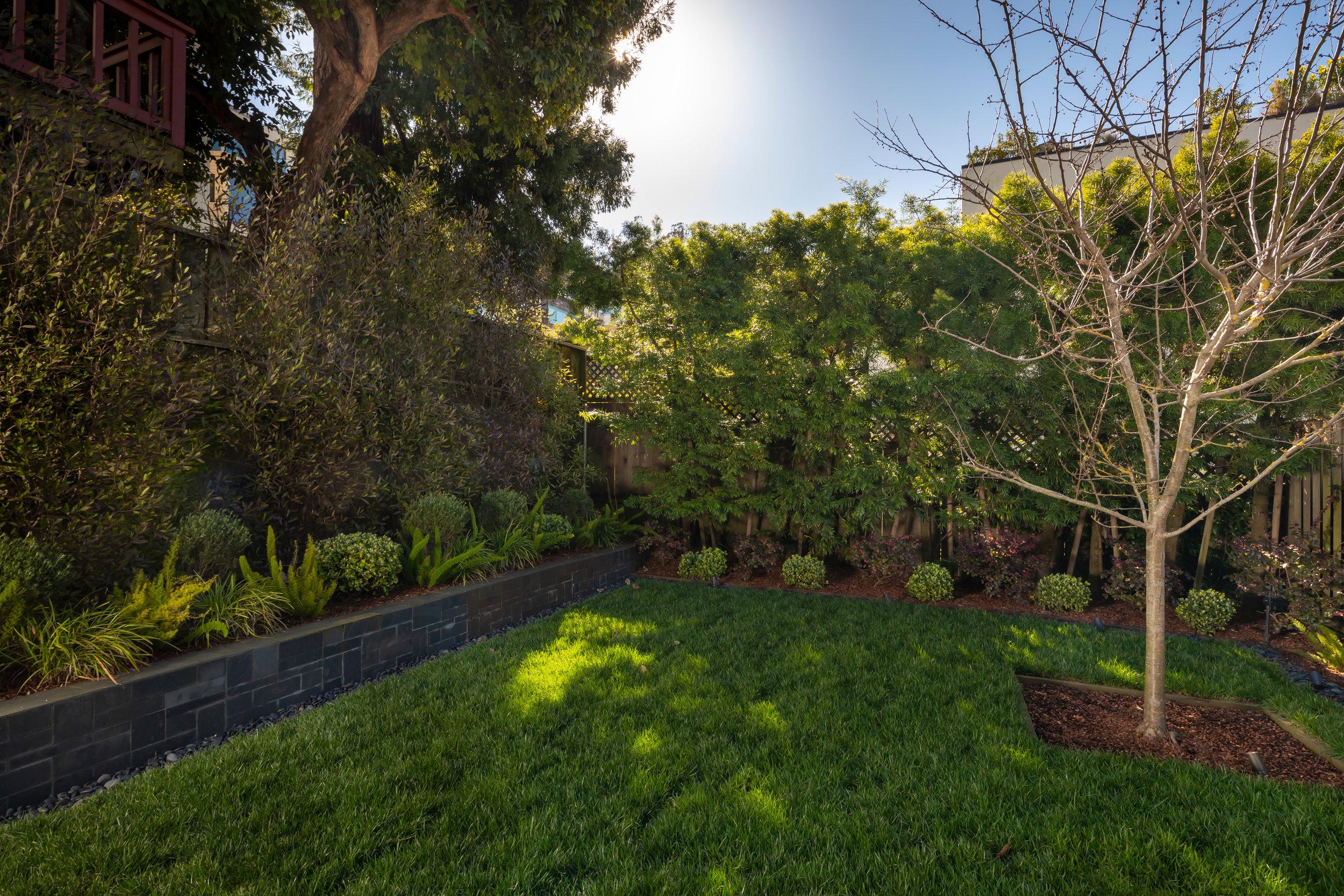 Backyard_Lower_3590.jpg