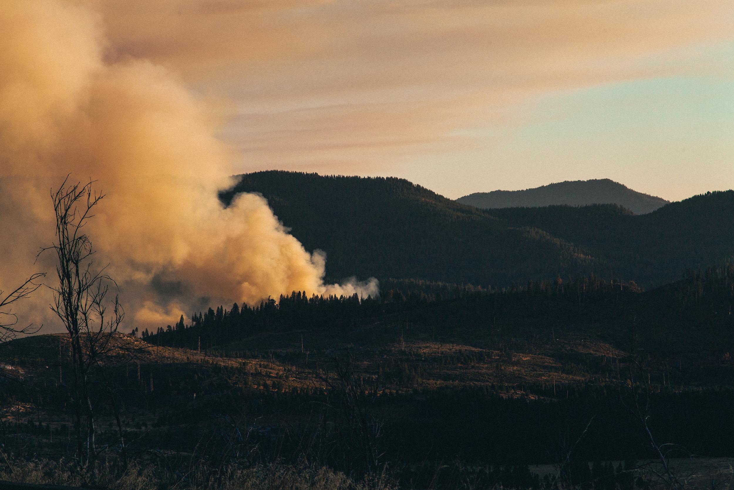smoke-1.jpg