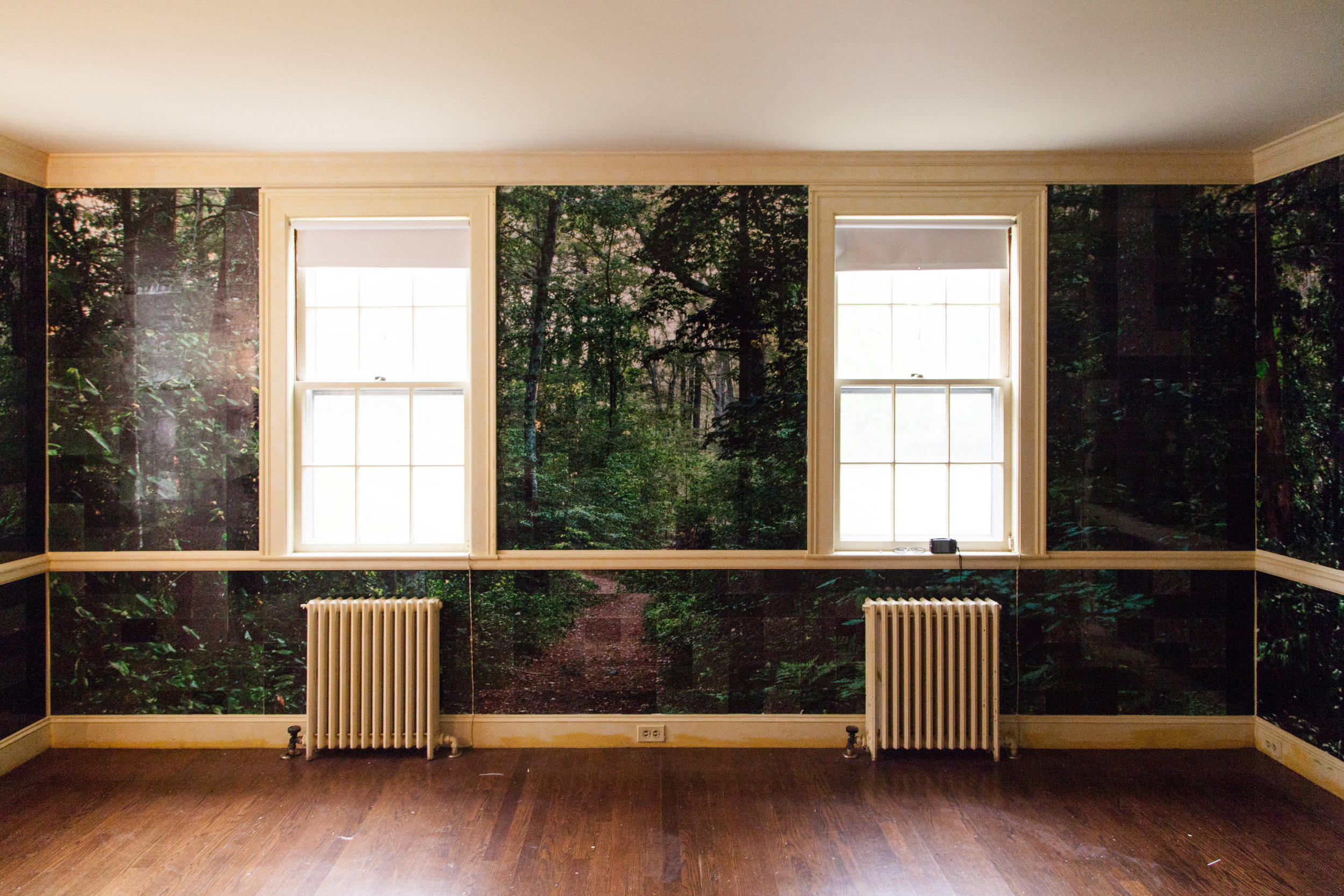"""3000+ photos wallpapering room per the theme """"Bringing the Outdoors In"""""""