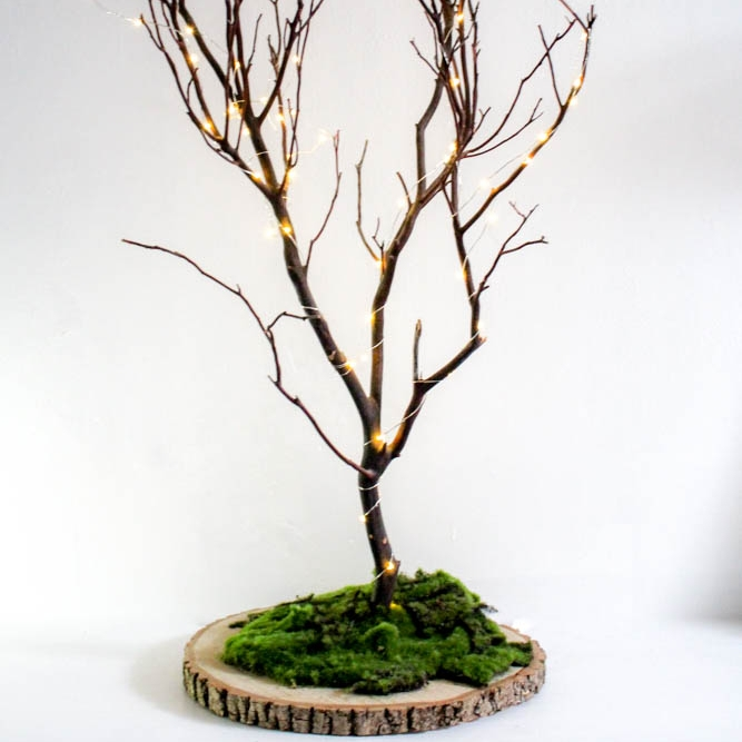 Guest Book fairy light trees - These trees with their twinkly fairy lights make great decorations or can be used as an alternative guest book where guests can 'leave' notes for you.