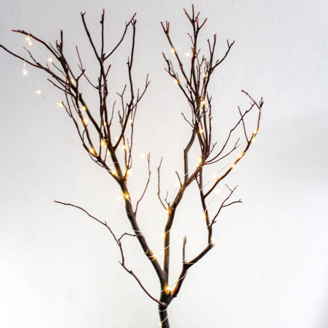 Light Up Tree - A backdrop to hand elements to add to your theme. Fairly lights are always a bonus.