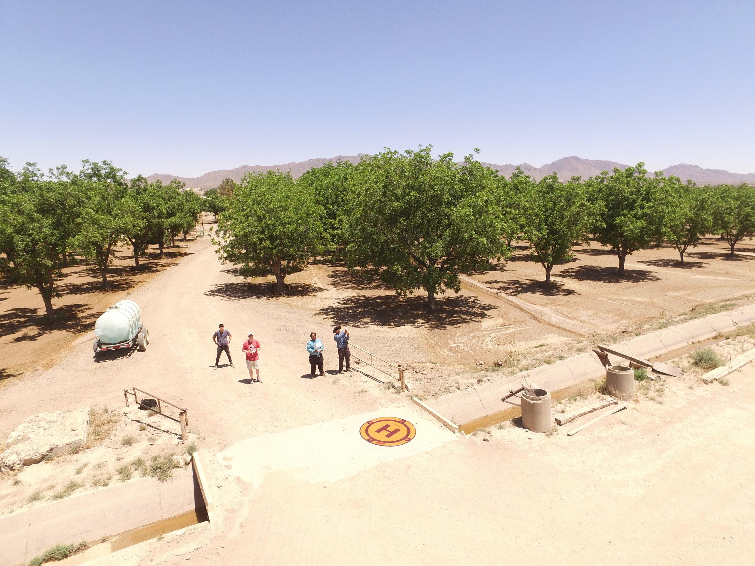 Drone flight at flood-irrigated pecan farm (el paso, tx)