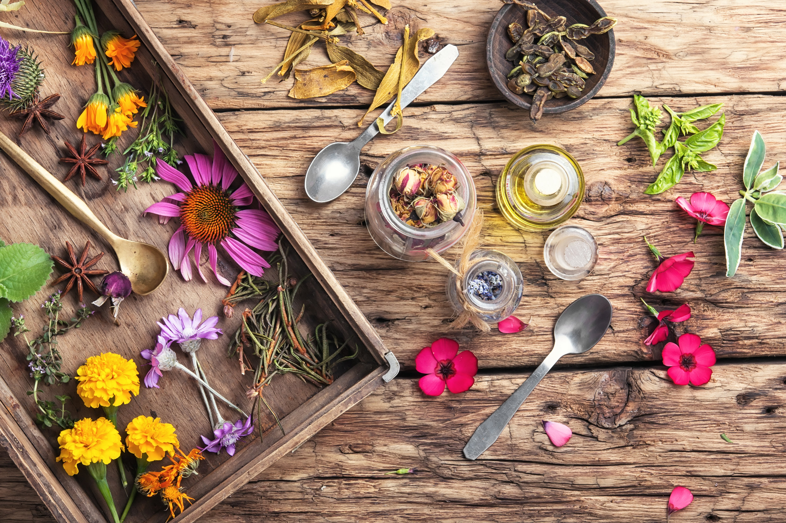 motley-healthy-herbs-P3RRJZ6.jpg