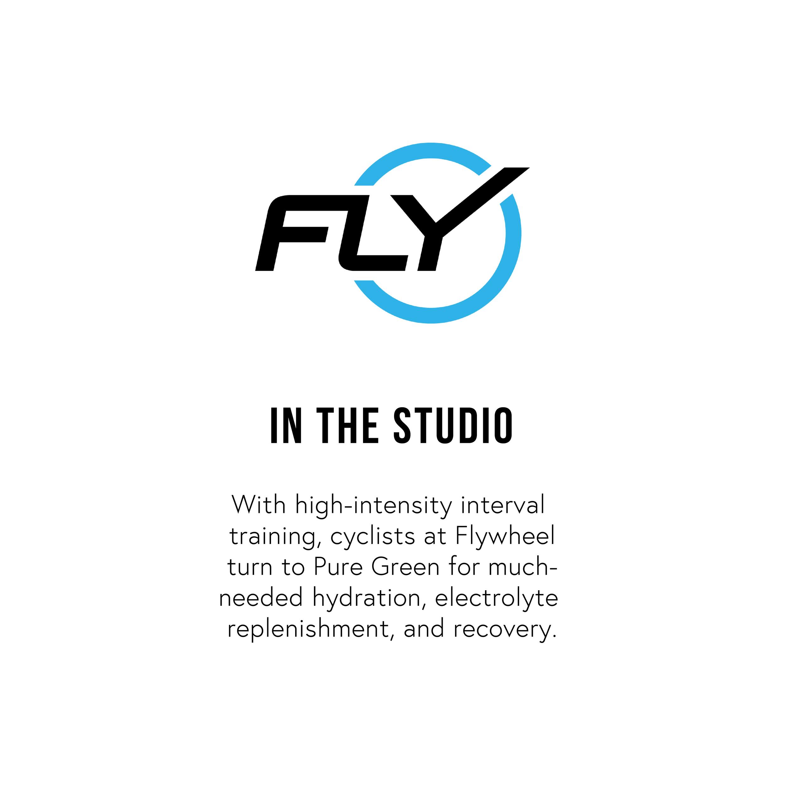 Flywheel-04.png