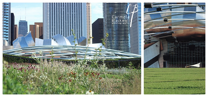 Jay Pritzker Pavillion at Millennium Park. Amazing design.