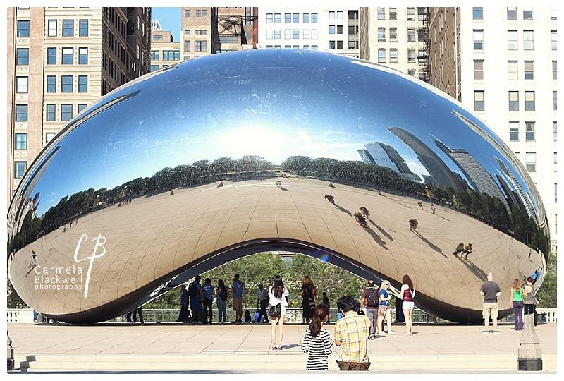 Chicago 2015010.jpg