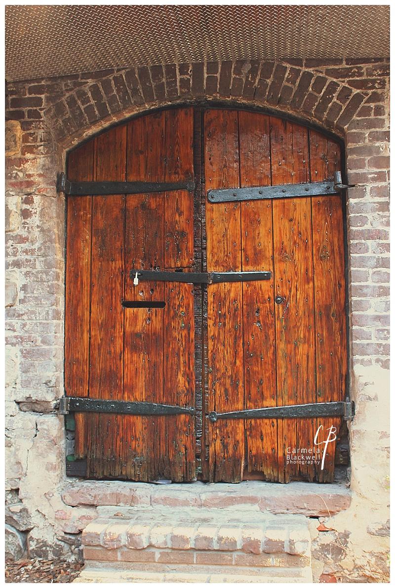 Savannah 2014002.jpg