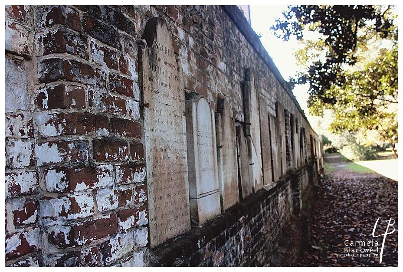 Savannah 2014014.jpg