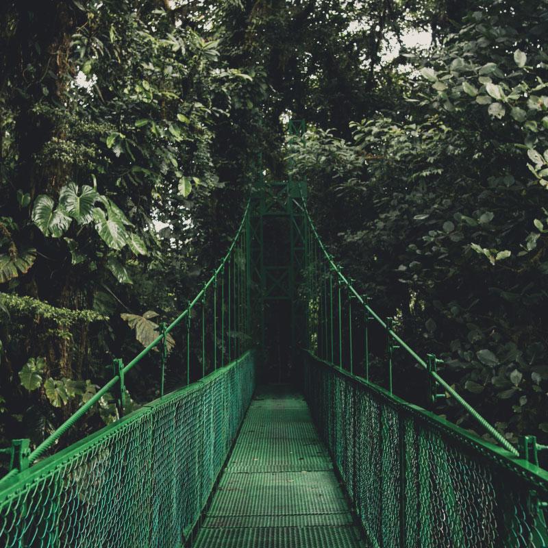 Hanging-bridges-Monteverde-Costa-Rica.jpg