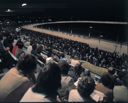 """A night at the trots (""""View from the stands""""), 1971"""