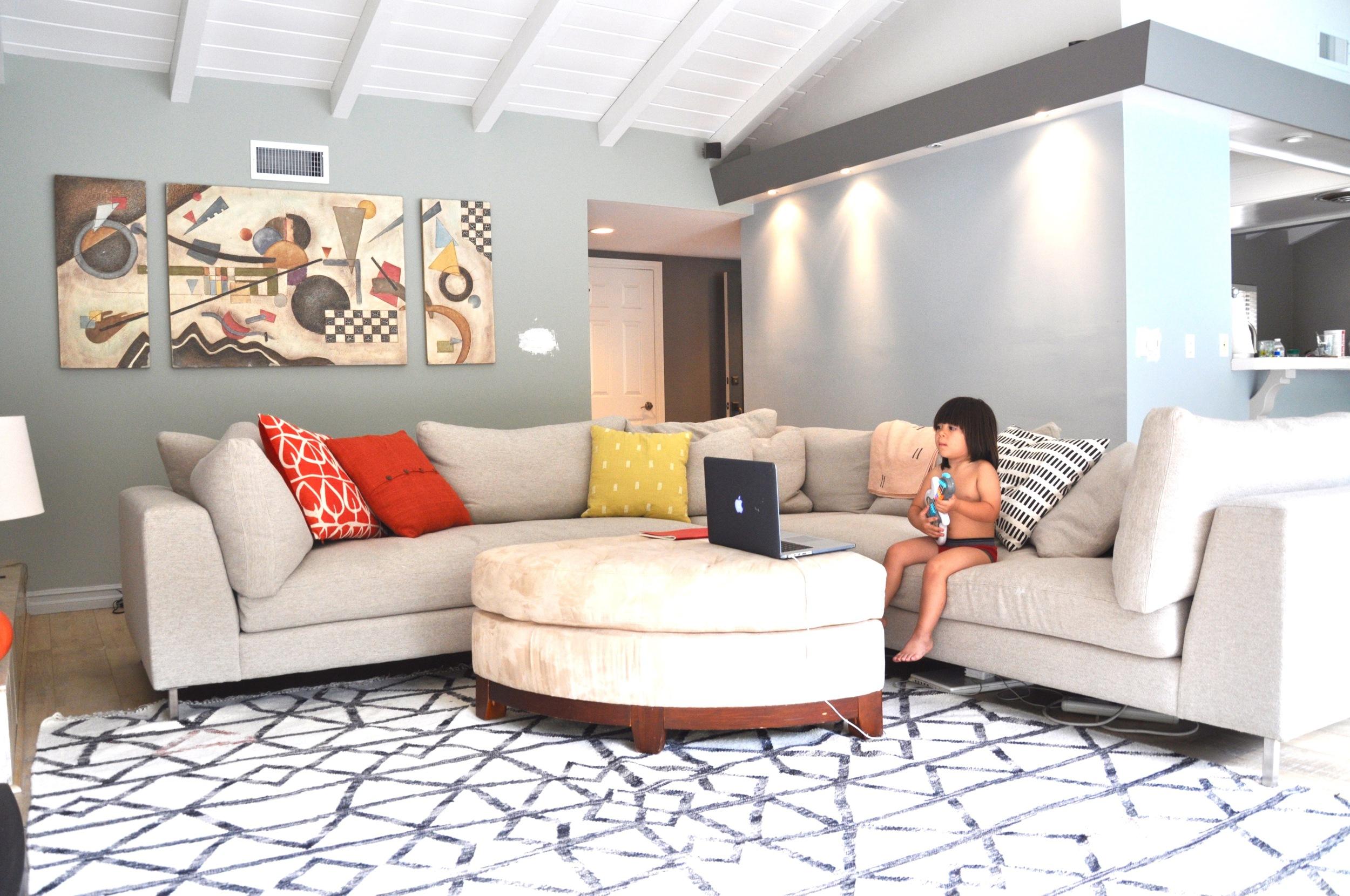 Living Room, F&B  Blue Gray  &  Parma Gray . Entry  Mole's Breath