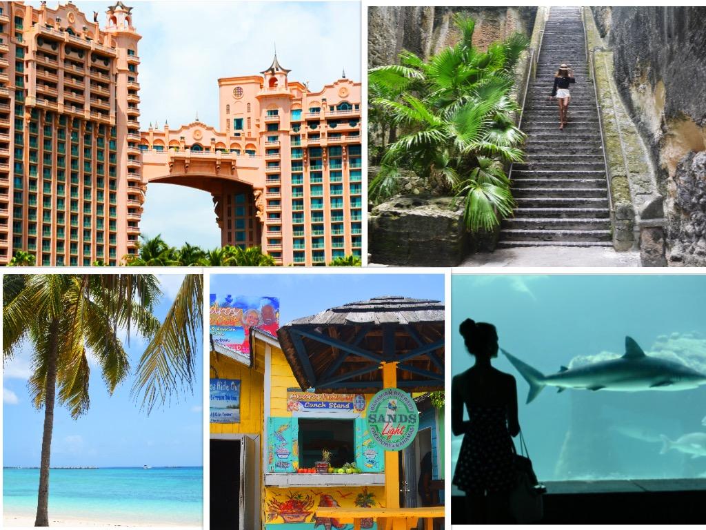 Nassau collage.jpg