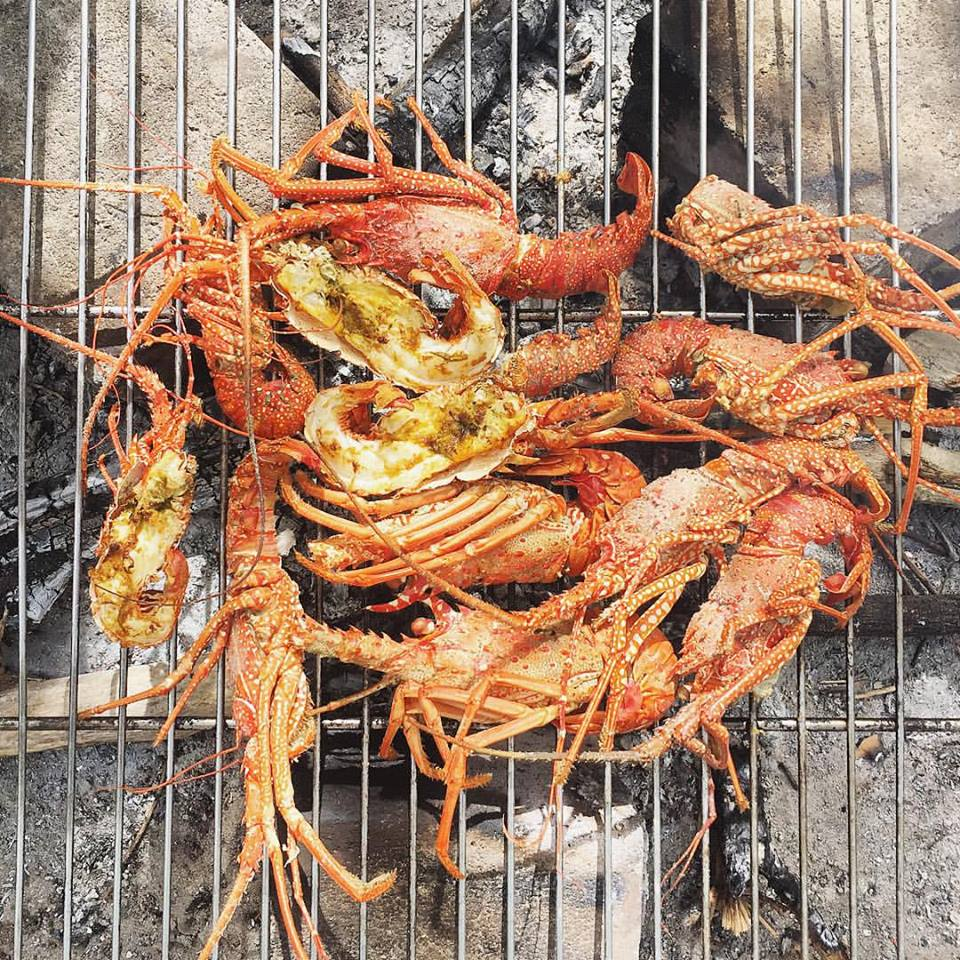 Cooking lobster in Haiti