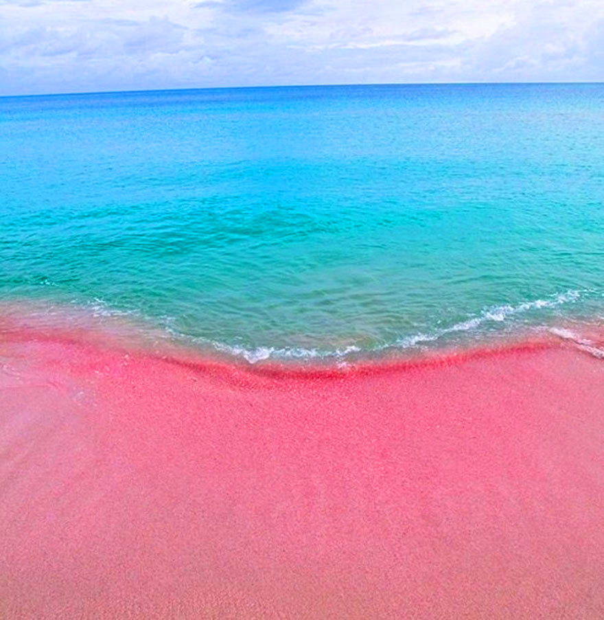 Barbuda_Pink Sand Beach