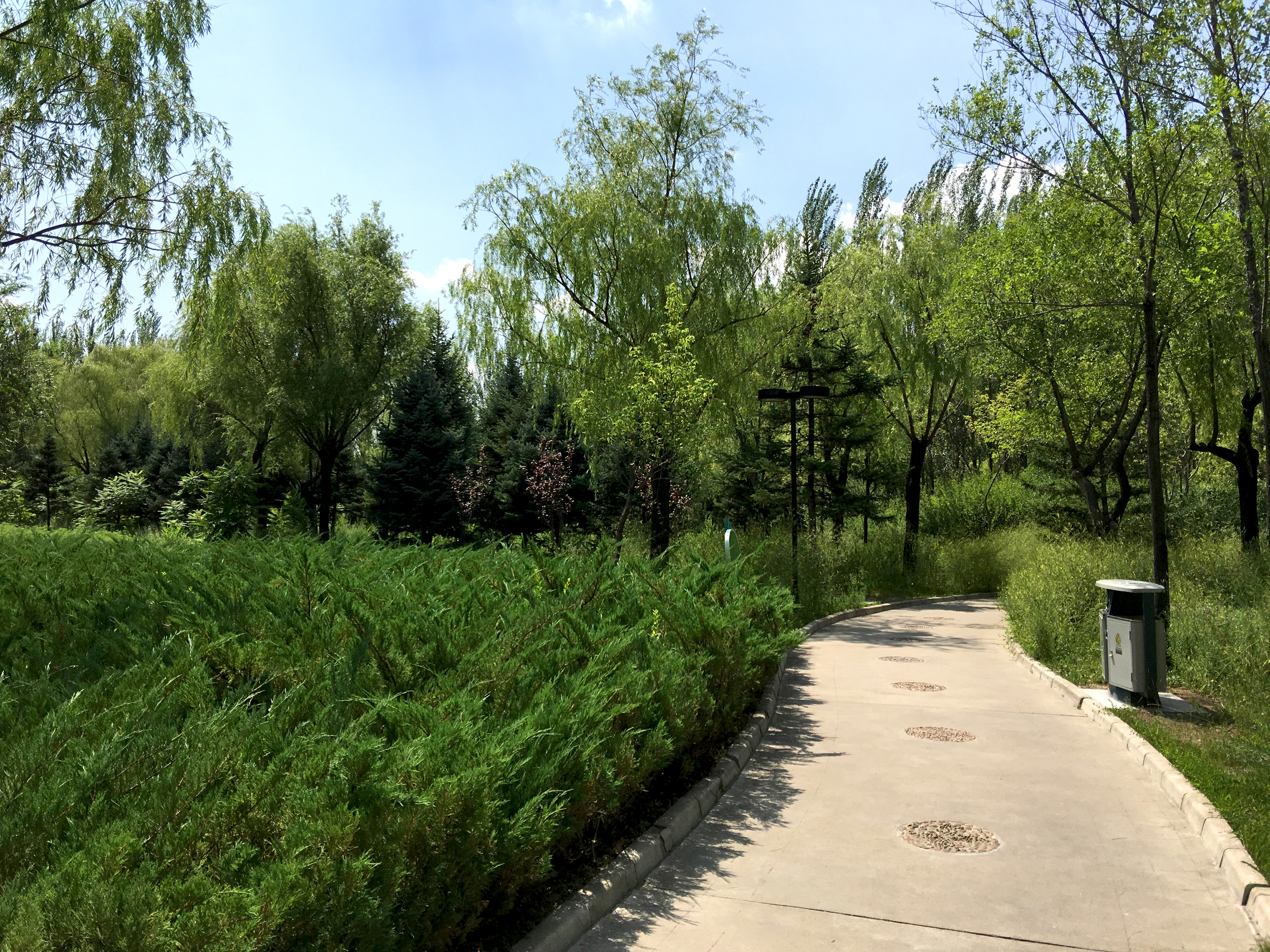 Walking through the park. Wanda Shopping Center is on the other side.