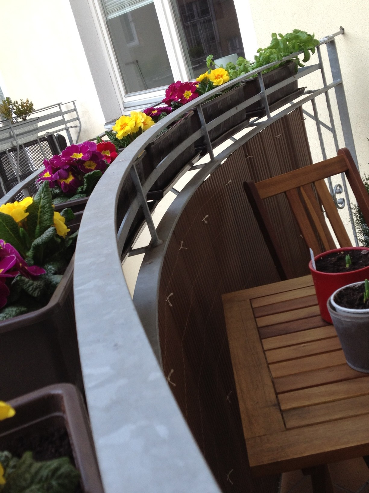 Flowers and Basil for the Balcony - Savannah Page