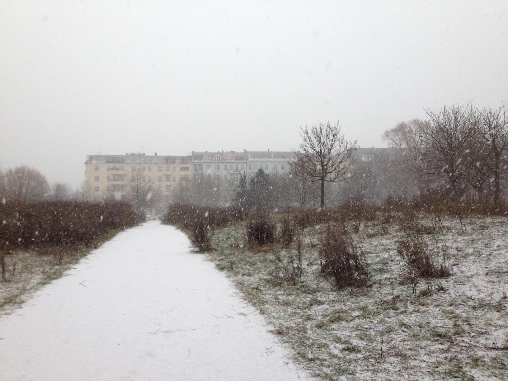 Snow in Berlin - Savannah Page