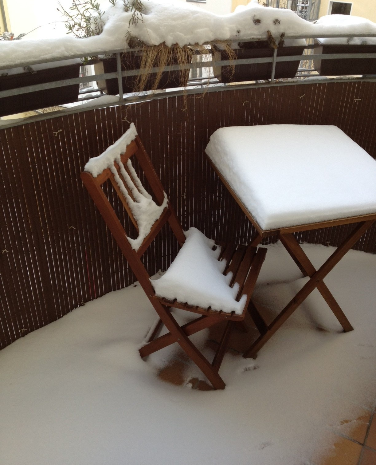 Snow in Berlin - Savannah Page, author