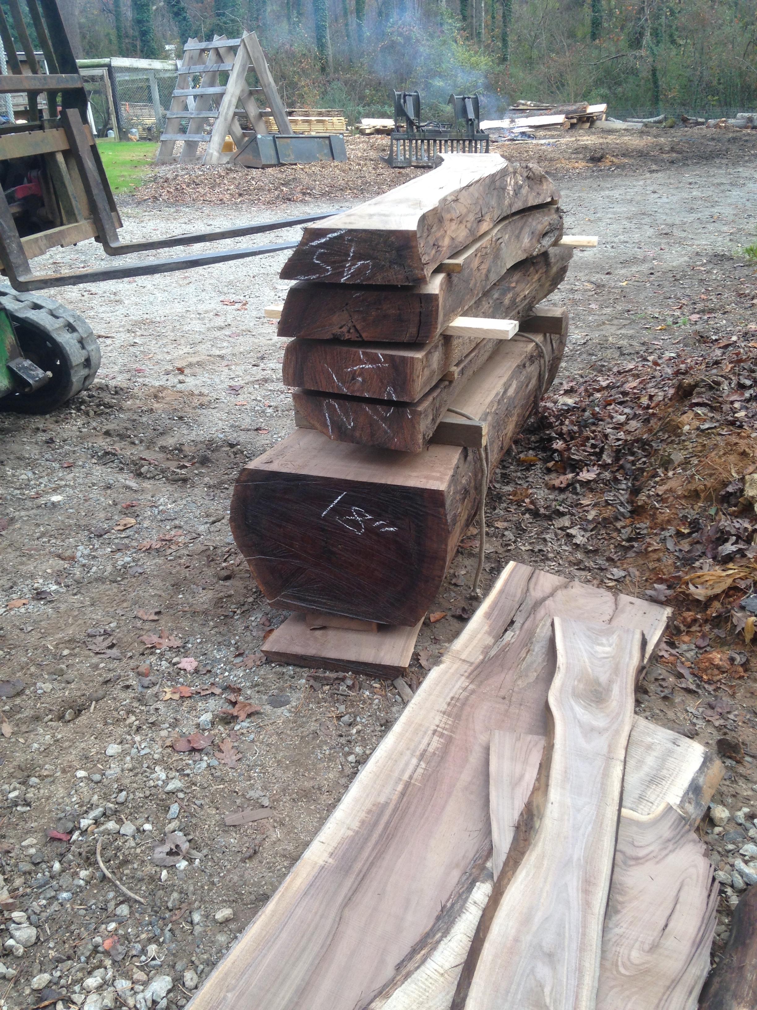 Walnut Urban Timber...