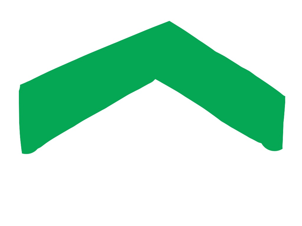 Green Angle, Ellsworth Kelly, 1970