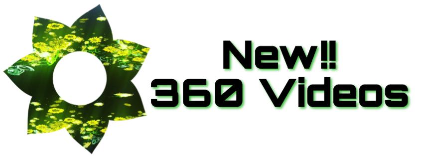 New 360 Videos