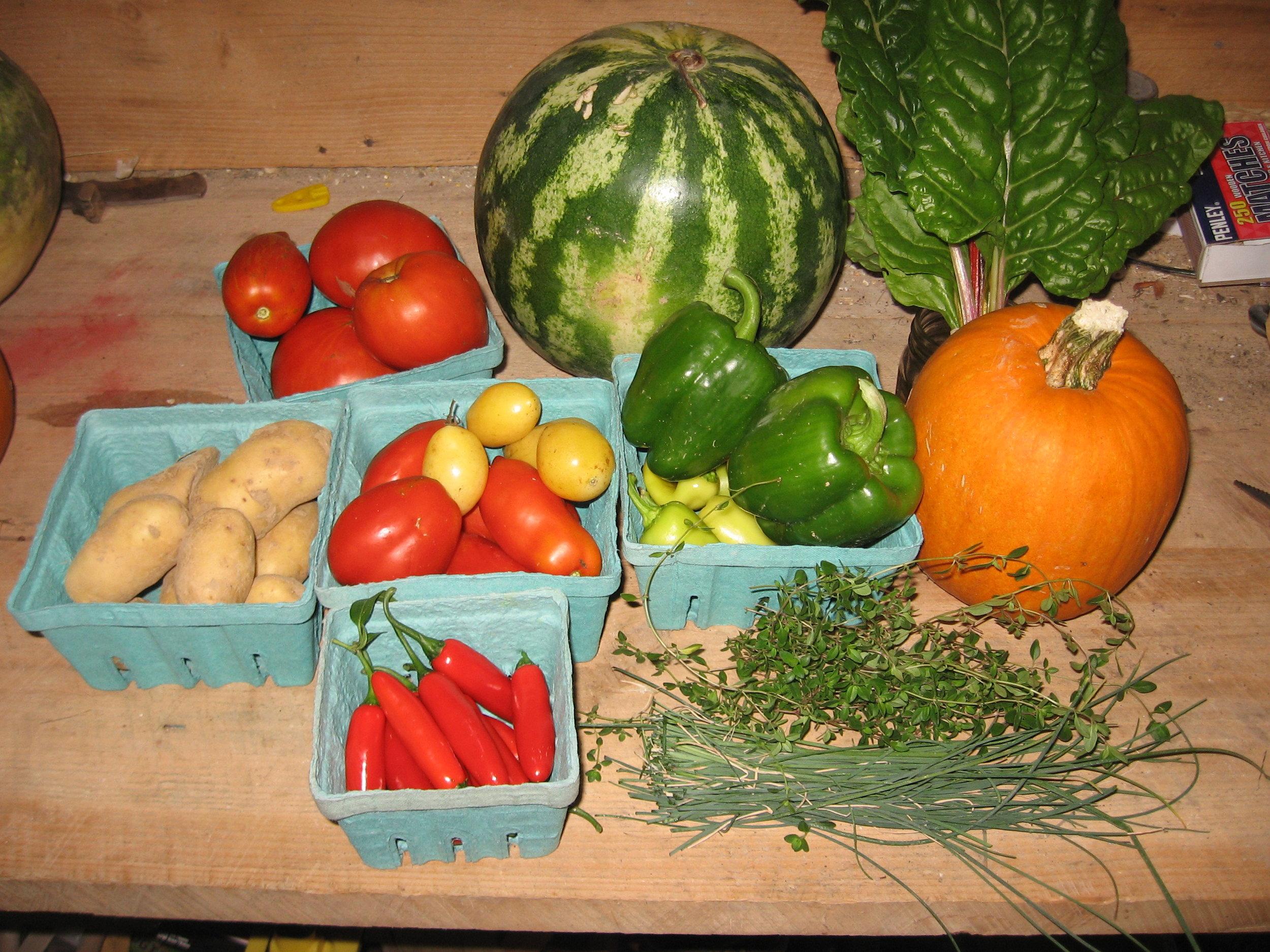 Fresh grown organic produce tastes the best!