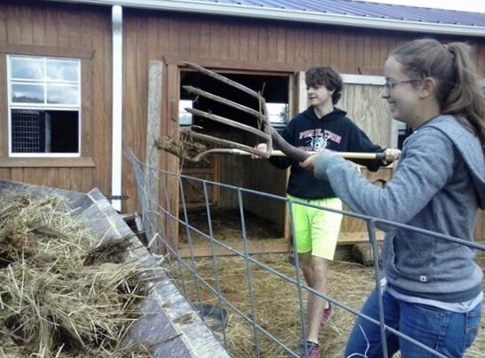 Caleb and Hannah cleaning stalls and sending manure to the compost pile.